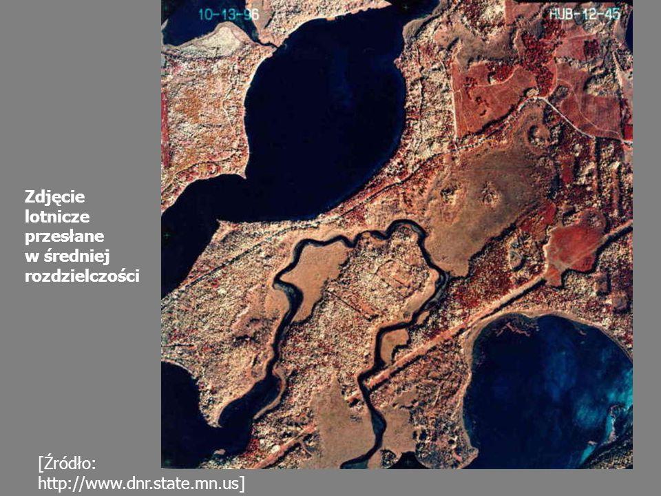 Zdjęcie lotnicze przesłane w średniej rozdzielczości [Źródło: http://www.dnr.state.mn.us]